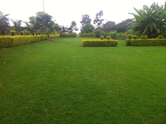 WanderJoy Gardens