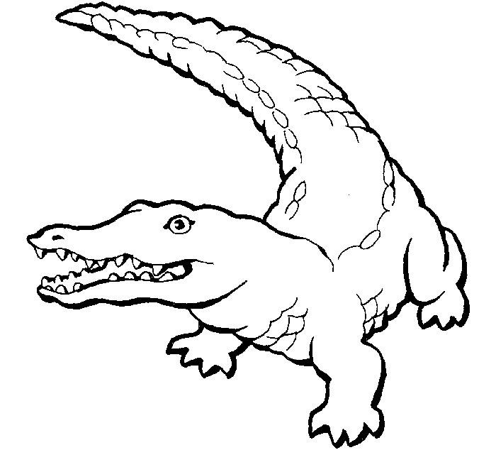 Alligator Printable Template