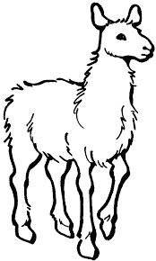 Alpaca Coloring Pages for Adults