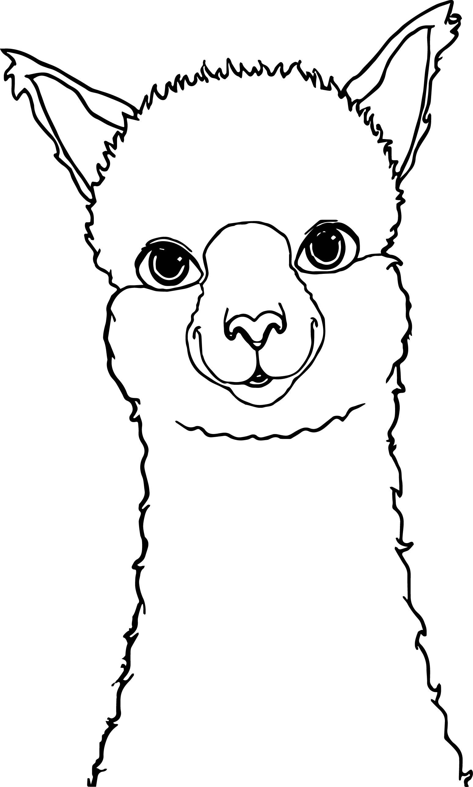 Alpaca Face Coloring Pages