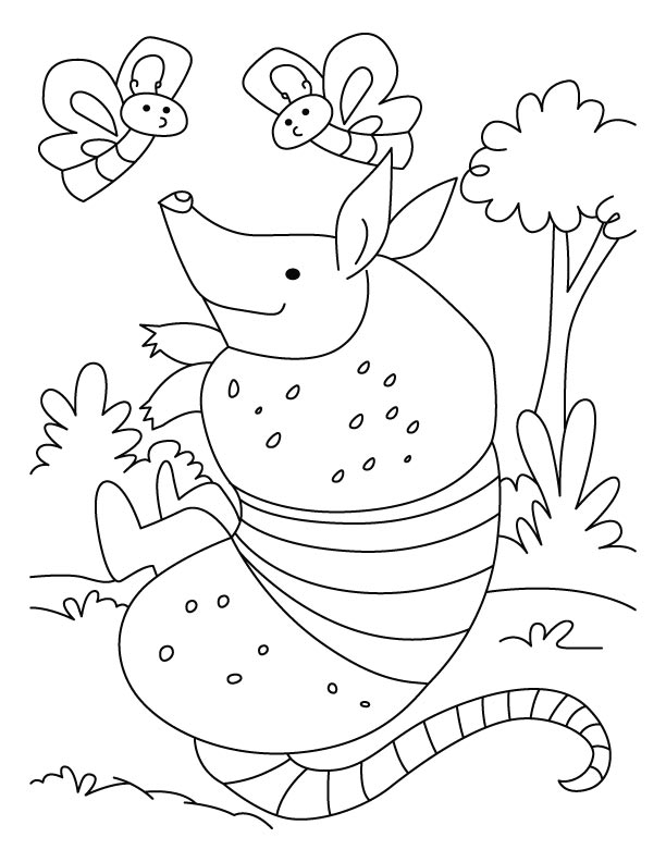 Armadillo pictures to print