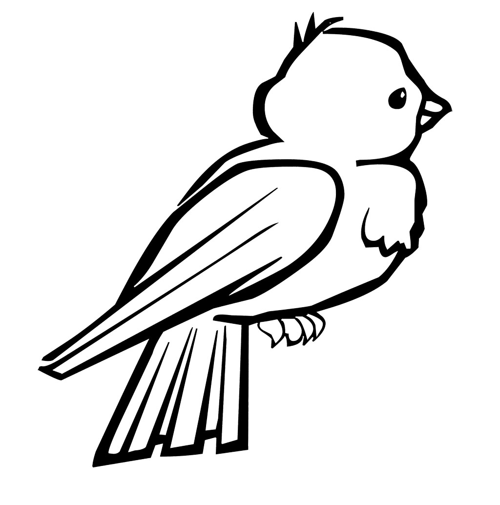 Baby Birds Coloring Pages