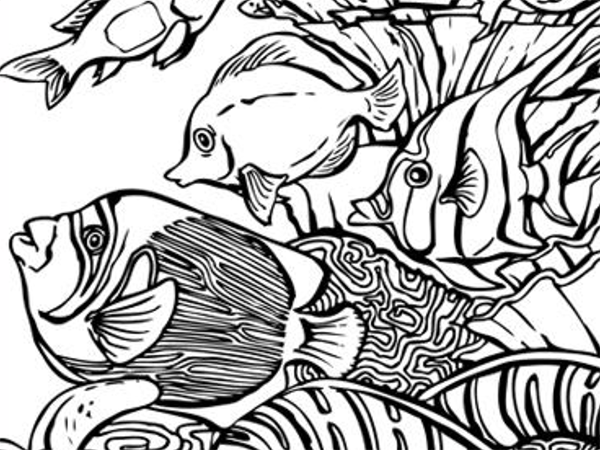 Baby Coral Coloring Pages