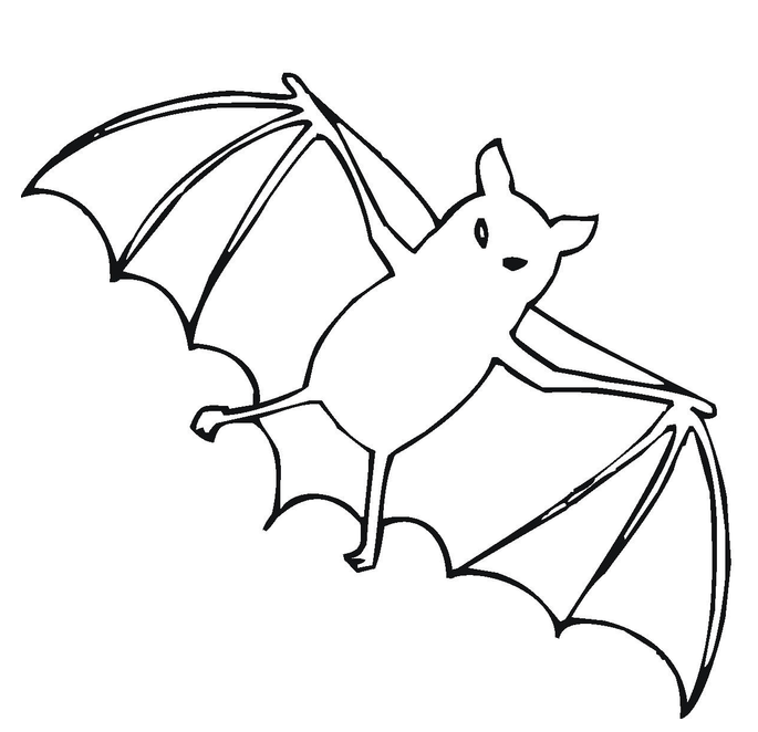 Free Printable Pictures of Bat